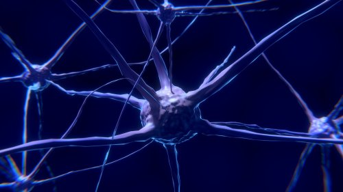 Animation of a neuronal synapse.